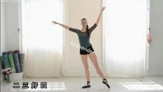 美丽芭蕾Ballet Beautiful天鹅臂瘦腿瘦腹提臀背部雕刻全身燃脂今天我们都是废鹅(127)