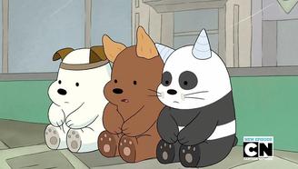 三只贱萌裸熊的日常笑得我节操都掉了