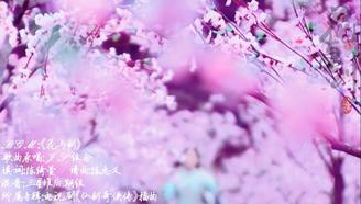 【Momo桃】花与剑