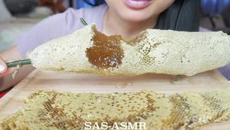 【SAS】4.3 巨…巨大的蜂巢蜜!小姐姐第三次吃啦~asmr