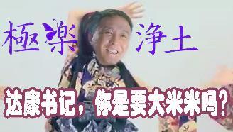 【达康书记×极乐净土】我是来换大米米的!